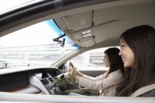 20代の自動車保険